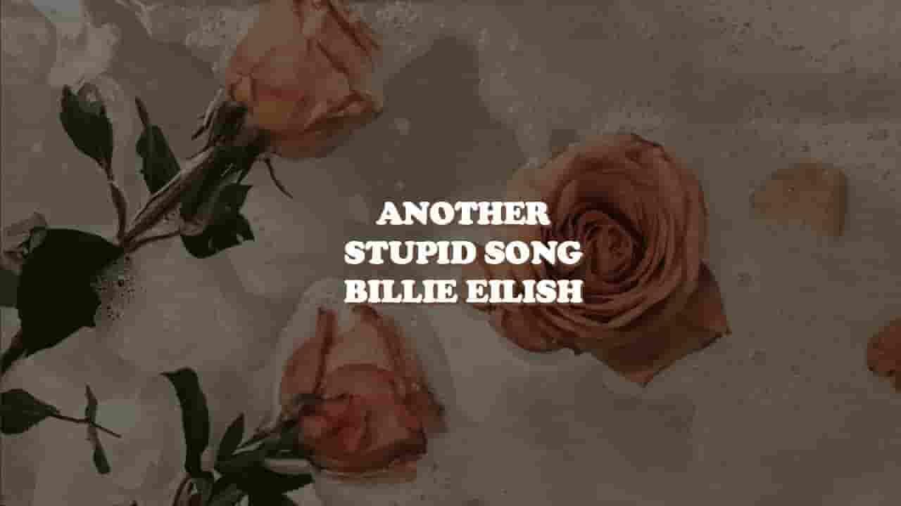 Another Stupid Lyrics - Billie Eilish