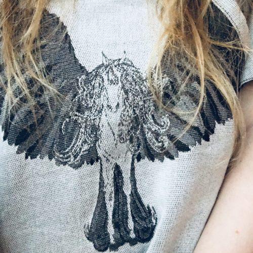 Sensimo Slings Pegasus Fulfilled Dreams