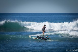 surfing swamis w (12 of 61)