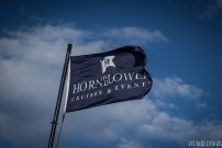 hornblower w (110 of 113)