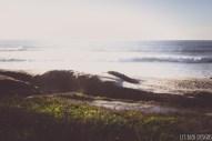 windansea la jolla san diego ocean