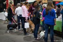 pet expo w (8 of 34)