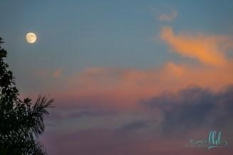 moon photo - sunset photo - landscape photography - nature photography - fine art photography