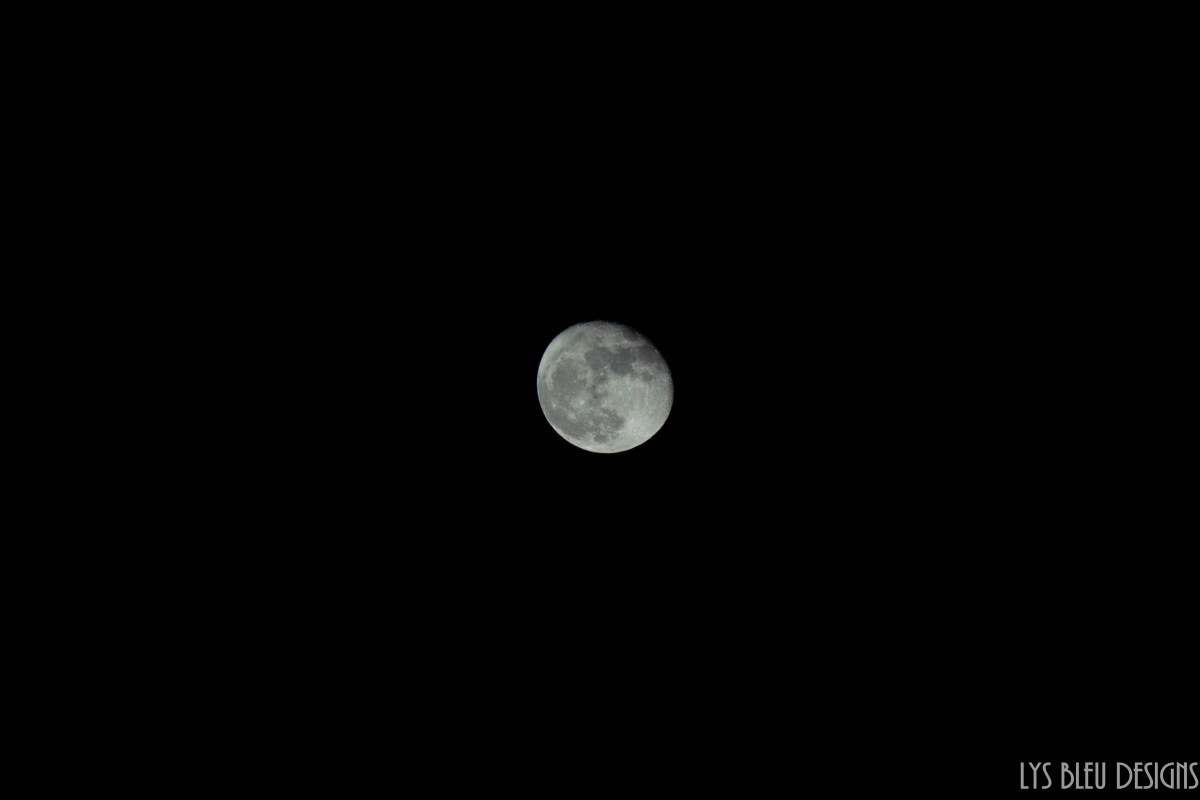 moon - picture of the moon - night photography