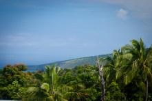 hawaii photos - hawaii pictures - hawaii images - big island - palm trees - paradise - tropical island - ocean