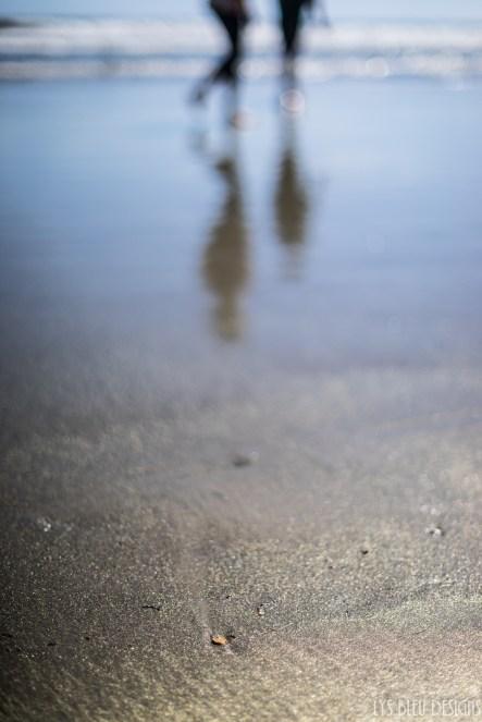 sand gold beach coronado