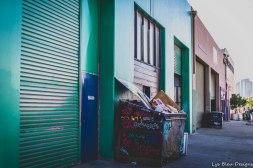 barrio logan w (128 of 150)