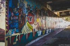 barrio logan w (52 of 150)