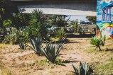 barrio logan w (61 of 150)