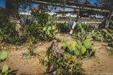 barrio logan w (68 of 150)