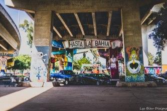 barrio logan w (8 of 150)
