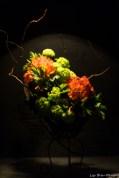 coronado flower show w (102 of 240)