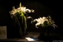 coronado flower show w (113 of 240)