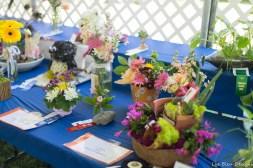 coronado flower show w (123 of 240)