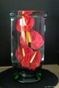 coronado flower show w (153 of 240)