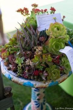 coronado flower show w (208 of 240)