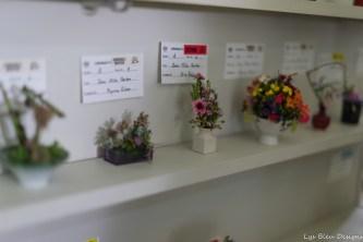 coronado flower show w (38 of 240)