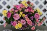coronado flower show w (58 of 240)