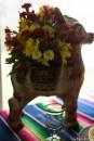 coronado flower show w (60 of 240)