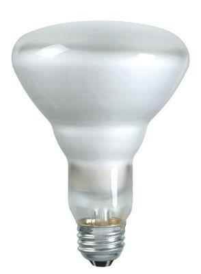 Philips Lamps 65BR30/FL55 120V 12PK
