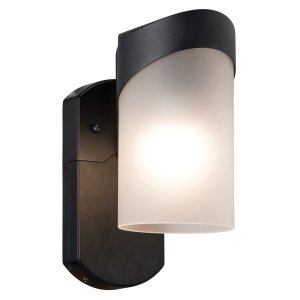 Contemporary Companion Smart Security Black Metal and Glass Outdoor Light Fixture