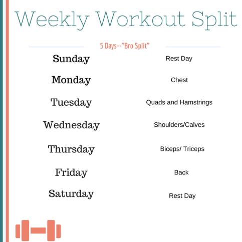 Weekly Workout Split-3
