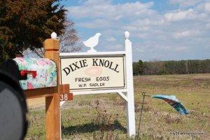 Dixie Knoll