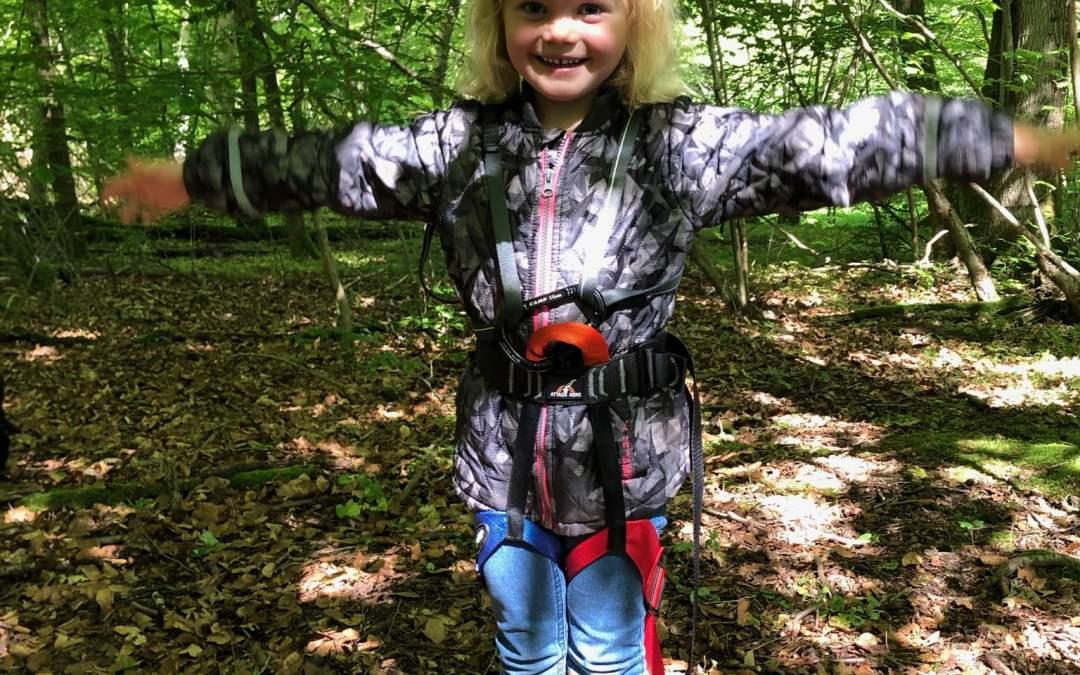 Flyveegern i skoven