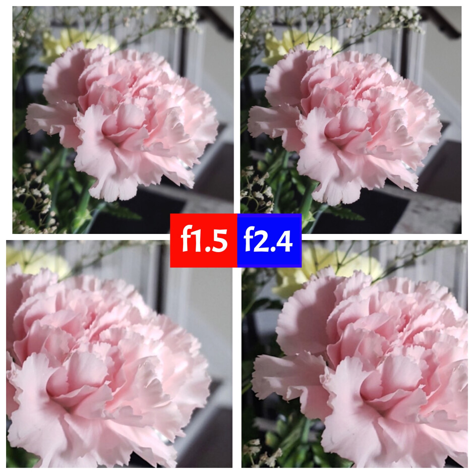 f2.4 versus f1.5 - notice how on the left the edges of the flower are out of focus and fuzzy, while on the right we get better subject focus. Photo by Marques Brownlee. - The negative effect of large camera sensors on new smartphones: The solution might be in the Galaxy... S9