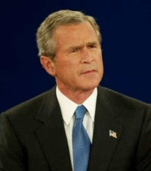 bush-looking-befuddled-767704