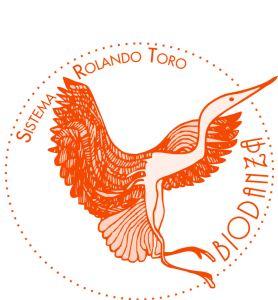 Biodanza-full-logo-new