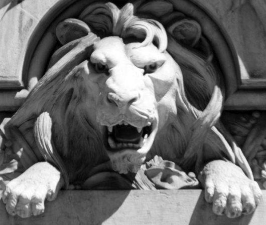 lion-head-1323809857ASm