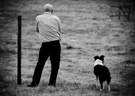 one-man-his-dog