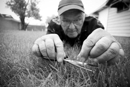 cutting-grass-with-scissors