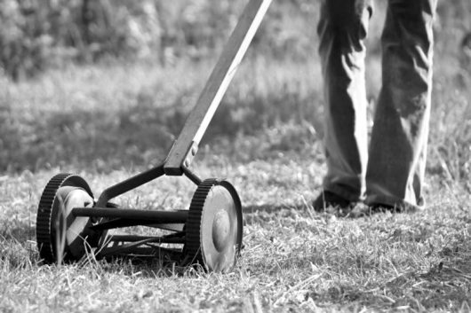old_reel_mower_l1