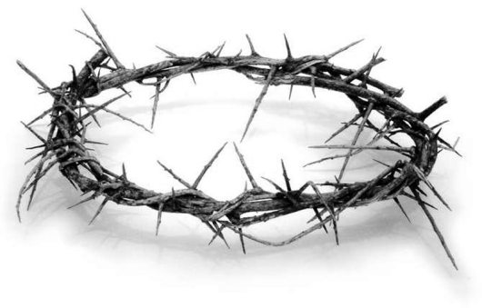 crown-of-thorns-lg