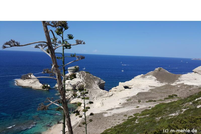 Bucht bei Bonifacio Korsika