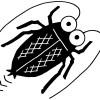 ゴキブリ駆除に潰したり叩くのはいや!簡単なホウ酸ダンゴの作り方と置き場所