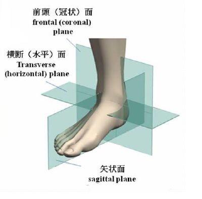 足と足関節の基本軸