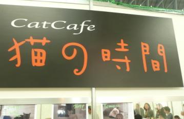 ペット王国2010_猫の時間