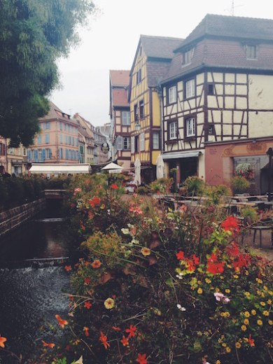 buildings flowers colmar france