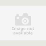 Used Skoda Fabia Hatchback 1 2 Tsi Monte Carlo Tech Black Edition 5dr In Bedworth Warwickshire George Brindley Motors