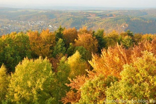 Ausztria_lombkorona_sétány_004.jpg