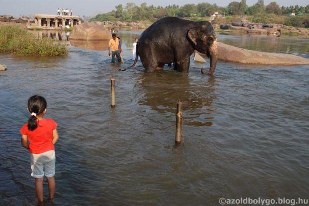 india_holi2.jpg