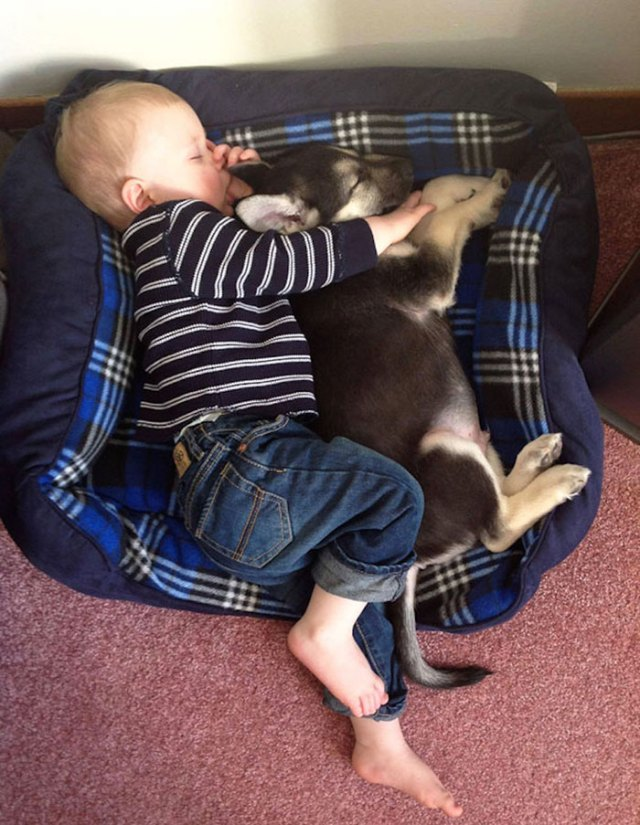 kids-with-dogs-52_700.jpg