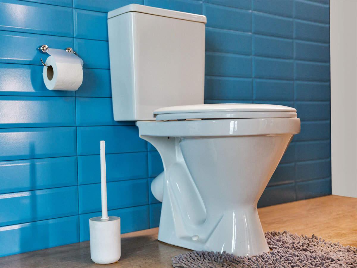 narendra modi world s biggest toilet