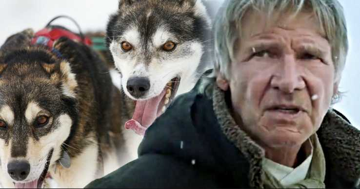Call-Of-The-Wild-Remake-Cast-Harrison-Ford (1)