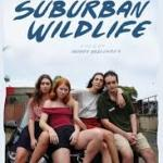 Download Suburban Wildlife (2019) Mp4