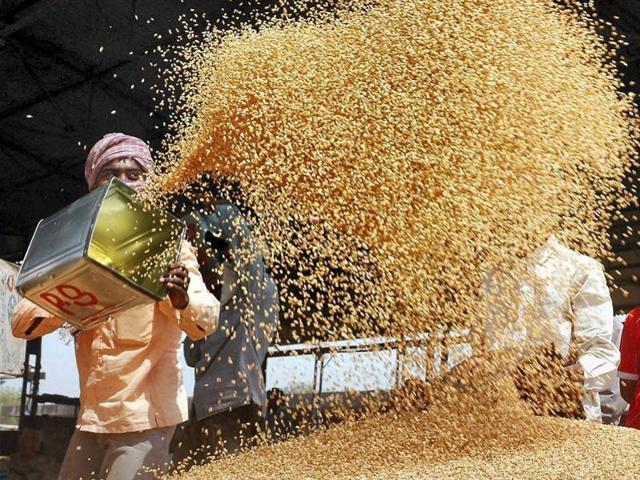 Telugu Latest Agriculture News   Andhra Government To Buy Food Grains