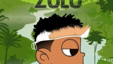 Photo of Download Album: Nasty C – Zulu Mixtape X DJ Whoo Kid